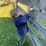 blue_chalk_fence