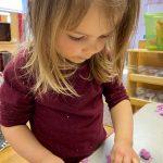 Purple Ruby - Playdough -