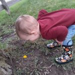 child finding flowers in outdoor learning environment
